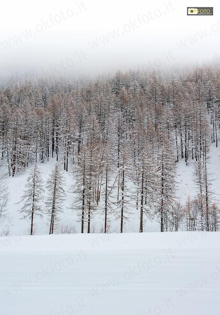 Simmetrie generate dalla neve e dalle nuvole