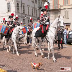 Carabinieri a cavallo con la mascotte Briciola