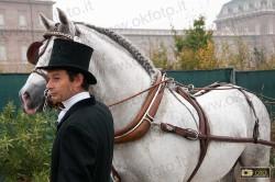 Il groom accudisce il cavallo in attesa della sfilata