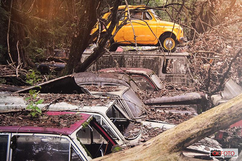 Una fotografia del cimitero di automobili di Kaufdorf