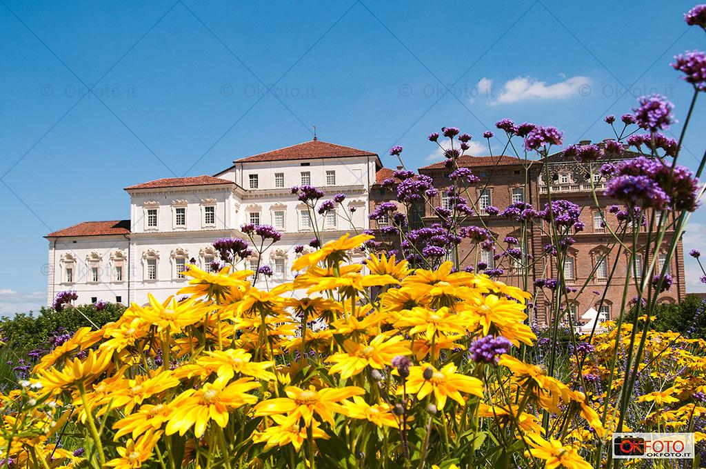 I giardini e la Reggia di Venaria ospitano il concorso attacchi di tradizione
