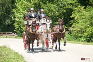 cavalli-e-carrozze-460
