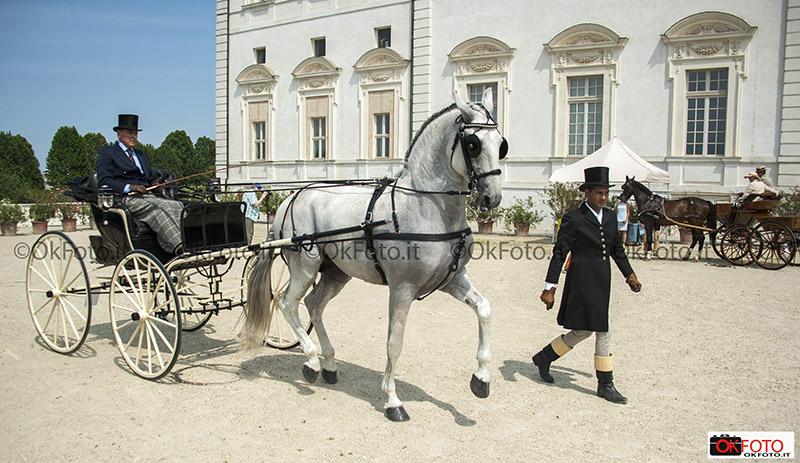Pasquale Beretta e il cavallo di Andrea Bocelli al Concorso della reggia di Venaria